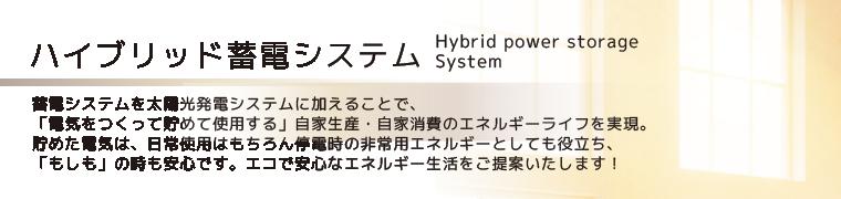 ハイブリッド蓄電システム